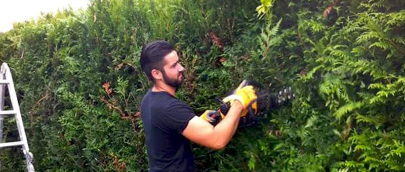 ENTRETIEN ESPACES VERTS : tonte pelouse, tailles des haies, jardinage, nettoyage extérieur, débroussaillage… création d'allées de jardin en béton lavé pavé. ELAGUEUR 77 FALLONE